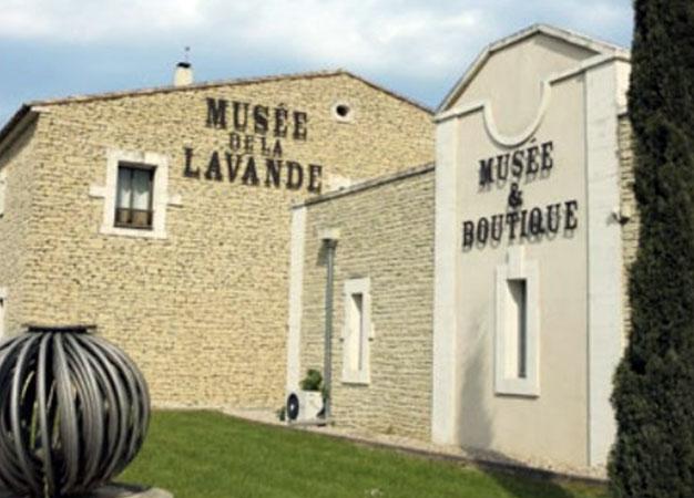 autre activité accrobranche a Rustrel LUBERON 3 | le musée de la lavande à Coustellet | Colorado Aventures
