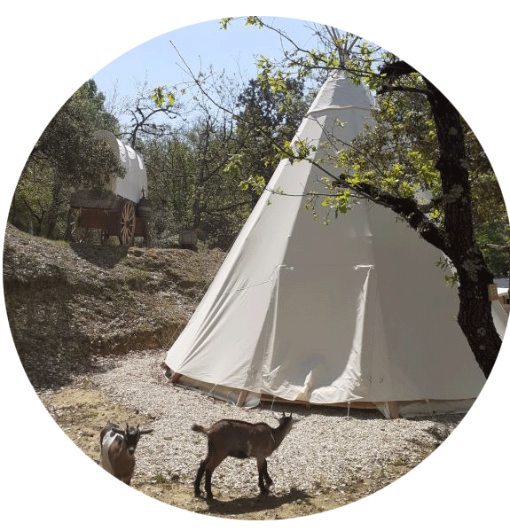 camping colorado | Camping | Colorado Aventures
